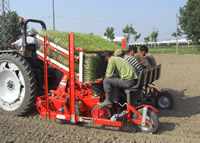 Baby Compact Transplanter